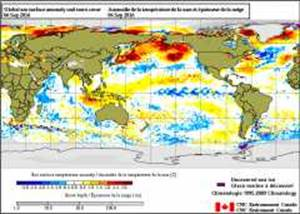 forecast-fall-2016-004
